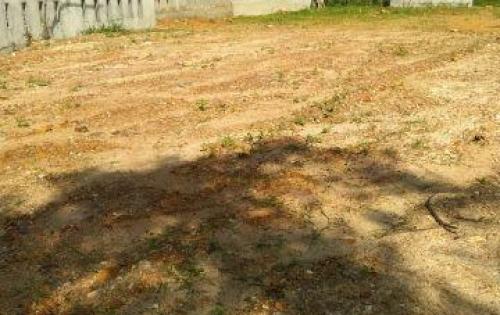 Thanh lí đất mặt tiền đường Sóng Hồng