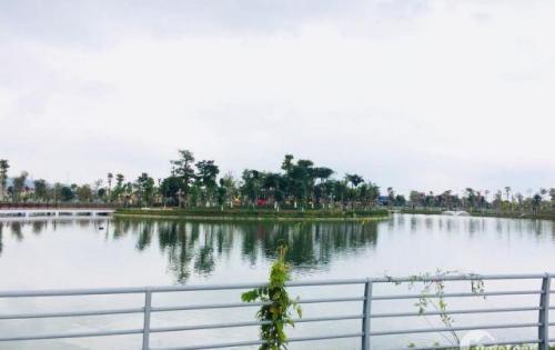 Bán đất khu đô thị mới Xuân An , Nghi Xuân Hà Tĩnh