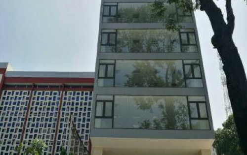 Chính chủ bán gấp Hotel 2 Mặt tiền Trần Nhật Duật, Tân Định, Quận 1; 8x18m,hầm 5 lầu,Giá chỉ 44.5 tỷ