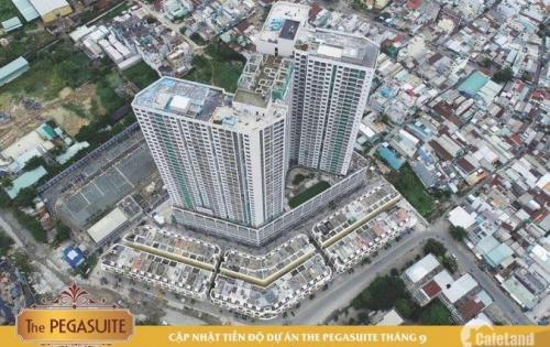Chuyển nhượng căn hộ The Pegasuite quận 8.Nhận nhà ngay tháng 12.chỉ 27tr/m2.