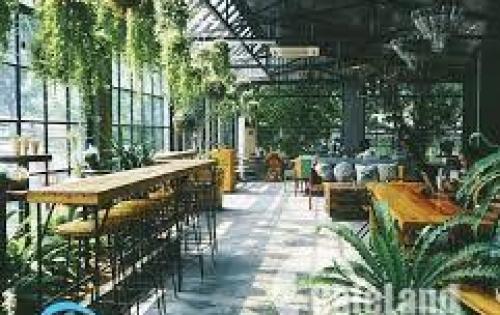 !!! Bán gấp quán cà phê 308 m2, Quang Trung, Gò Vấp. Giá: 4,6 Tỷ, LH:O798655603