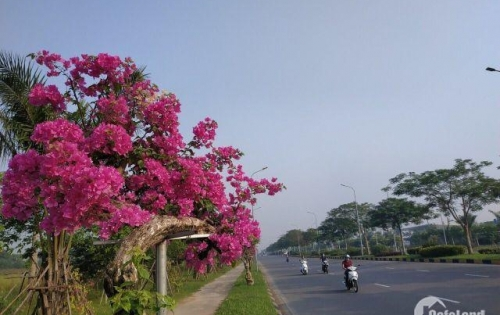 BÁN NHANH CĂN NHÀ 3 TẦNG KĐT CHUẨN SINGAPORE GIÁ TỐT NHẤT THỊ TRƯỜNG