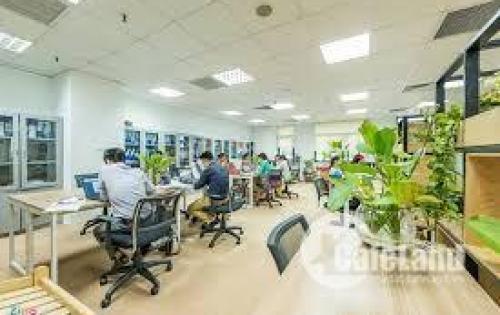 CHÍNH CHỦ: Cho thuê văn phòng Quan Hoa giá chỉ 8tr