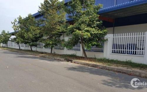 Cho thuê kho Quận 7 giá 70.000đ/m2, diện tích 300m2 - 1.000m2 kho chung. Lh 0916.30.2979 Mr Phúc