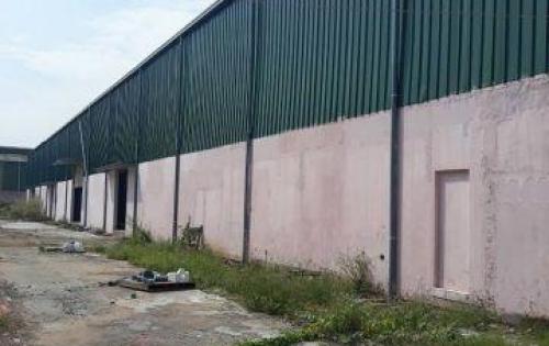 Cần cho thuê kho, nhà xưởng 500m2 - 8.000m2, khu vực Linh Trung, Quận Thủ Đức, TP. Hồ Chí Minh.