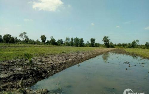 Cần tiền bán lô đất mặt tiền đường lô 500m2 tại Bình Đức-Long An