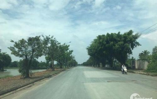 mừng chiến thắng việt nam hưng thịnh tặng nhiều ưu đãi lớn cho KH mua đất tại Biên Hòa