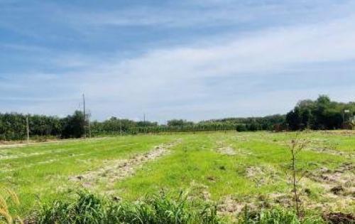 đất ngay chợ chơn thành bình phước diện tích 5x40m sổ hồng riêng thổ cư có sẵn