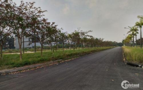 Bán gấp 2 lô biệt thự khu An Phú 3, tỉnh Hải Dương, giá siêu hấp dẫn.