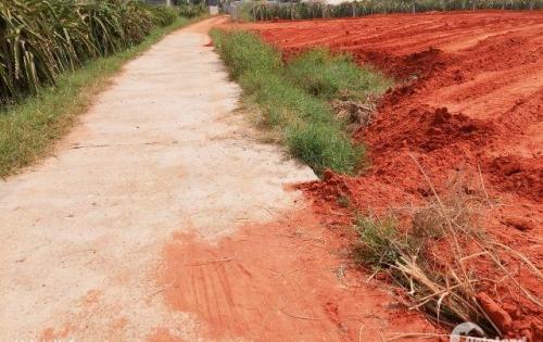 Đất thổ cư 100m2 xã Hàm Thắng ngay trục đường quốc lộ 1A, Phan Thiết