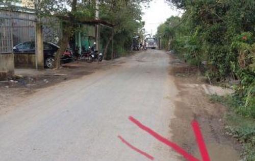 mặt tiền đường Tân Liễu - Hưng Long -Bình chánh