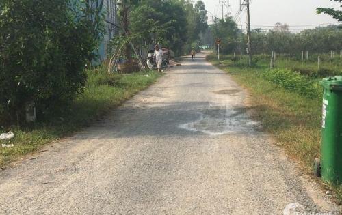 Đất thổ sổ đỏ đối diện KCN Đông Nam Củ Chi - mặt tiền đường 165m2 SHR