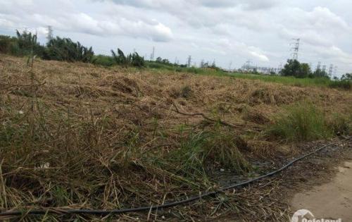 Bán đất mặt tiền 1.400m tại xã Phước Kiển giáp phú mỹ hưng chỉ 5tr5/m .