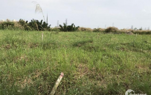 Cần bán gấp 4 lô đất 1000m đường 12m 5tr5/m Đường Phạm Hữu Lầu giáp Phú Mỹ Hưng 2..