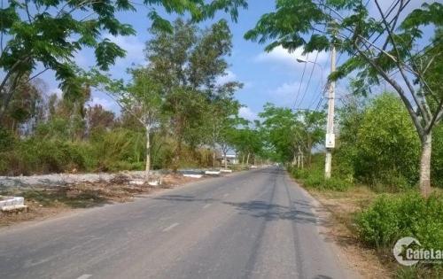 bán đất CLN đường Ngô Quang Thắm Nhơn Đức Nhà Bè