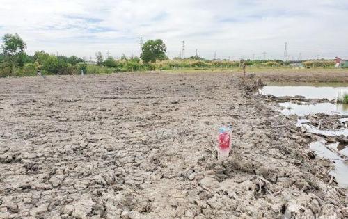 Bán lô đất thổ vườn Phước Kiểng Nhà Bè.
