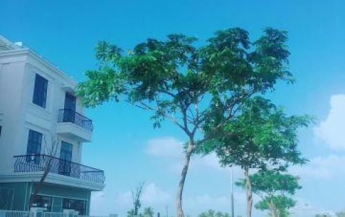 Chính thức ra mắt The One Beach – shopuhouse mặt tiền nguyễn sinh sắc
