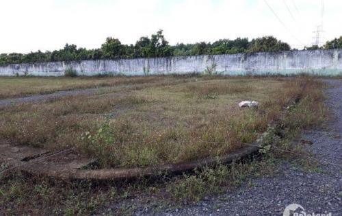 Cần tiền làm ăn, bán gấp 300m2 đất đường Bàu Cạn, sổ đỏ, kề bên dự án Vingroup 450ha, chỉ 775 triệu