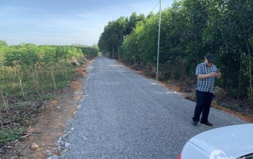 Chính chủ bán lô đất sau ủy ban Tân Hiệp, Long Thành, đối diện khu vui chơi, 9500m2 có 200m2 thổ cư.