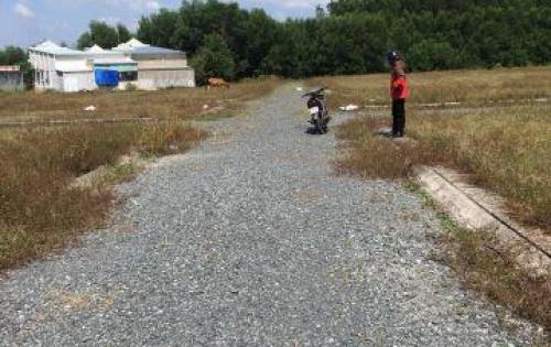 Bán đất Long Thành, 500m2 chỉ 1,6 tỷ, sổ đỏ, cách đường Bàu Cạn 50m, gọi 0902666803