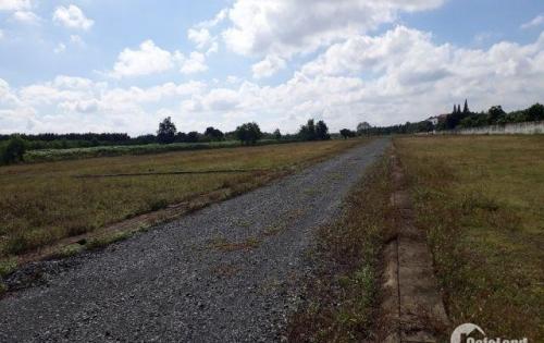 Cần tiền làm ăn, bán gấp 300m2 đất đường Bàu Cạn, sổ đỏ, kề bên dự án Vingroup 450ha, chỉ 800 triệu