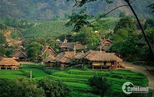 Đất thổ cư 2.375m2 Lương Sơn chính chủ, lô đất tựa đồi