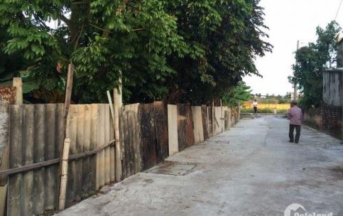 Woa woa woa Gia đình vì có việc lên muốn bán lô đất Cát Linh, Tràng Cát,Hải Phòng. 7tr/m