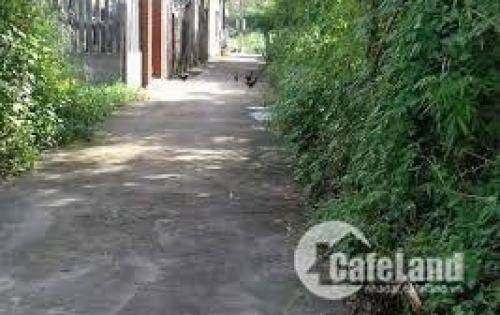 Bán đất nền đẹp giá rẻ Chiết Bi, xã Phú Thượng, Huyện Phú Vang.