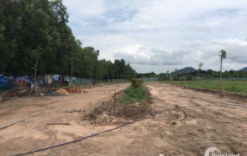 Bán đất Tân Hòa, Phú Mỹ giá chỉ 380tr/100m2