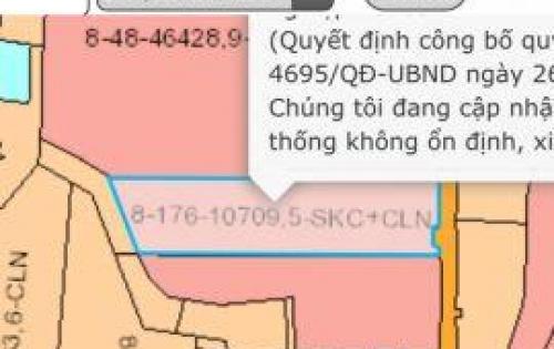 Sang 1,3ha đất, nhà xưởng KCN Sông Mây, Trảng Bom, 28 tỷ