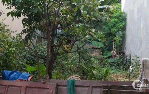 50 m2 đất thổ cư Tổ dân phố Tó, Phường Tây Mỗ, Quận Nam Từ Liêm