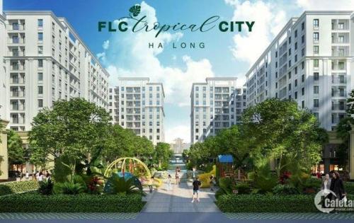 Tâm chấn FLC Tropical City-Cơn sốt đầu tư Hạ Long