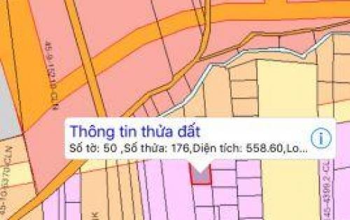 Chính chủ bán đất sổ đỏ đường Bàu Cạn Long Thành, gần cổng số 3 sân bay, 558m2, 1,5 tỷ