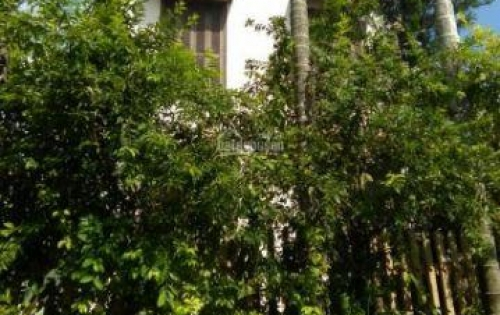 Bán nhà lầu 3 tầng, phong cách vườn, cách biển 5km