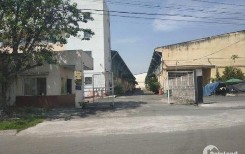 Cho thuê nhà xưởng gần công ty SamSung khu công nghệ cao, Quận 9. DT 1.500m2. Giá thỏa thuận
