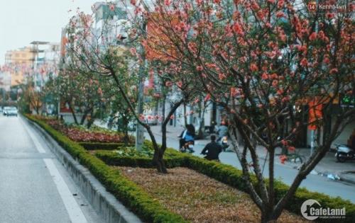 Nhà mặt đường Lạc Long Quân Diện tích sổ 43m2 mặt tiền 4.1m 9.99 tỷ