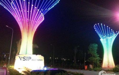 Chính chủ bán nhanh nhà sân vườn chuẩn mực singapore tại vsip bắc ninh