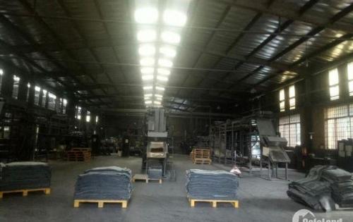 Cho thuê kho, nhà xưởng 2.000m2 (20m * 100m) mặt tiền đường Vĩnh Lộc