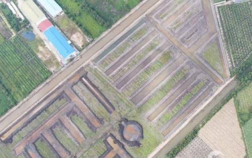 Đất nền Long An mặt tiền đường tỉnh lộ 830