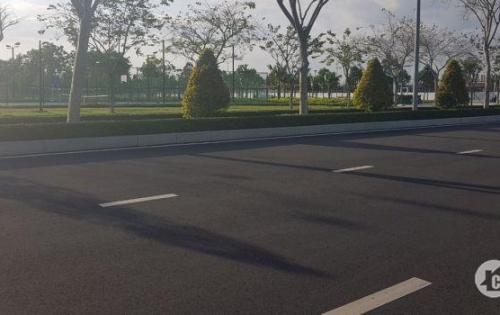 Lá phổi xanh của Biên Hòa - Đất nền Biên Hòa, Đồng Nai