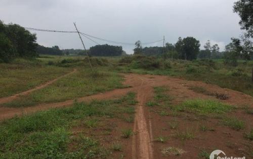 Tôi cần bán gấp 1 mẫu đất có thổ cư tại Cẩm Mỹ gần Hương lộ 10 chỉ 550 ngàn/m2.