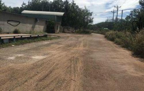 Bán đất cho người có tiền đầu tư lâu dài tại Dầu Tiếng Bình Dương đường đất 8m thông