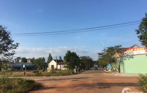 Gia đình cần tiền bán gấp 600m2 đất thổ cư 100% đường nhựa 16m cạnh chợ dân cư sầm uất...