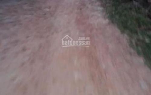 Bán gấp nền đất lúa 6x23m2 ngay ấp An Thủy, xã An Ninh Tây.Lh: 0902.381.631
