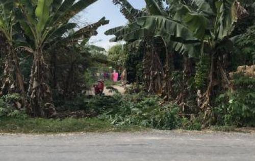 Bán đất thổ cư, DT lớn, MT đường 6m tại xã Đức Lập Hạ, Đức Hòa