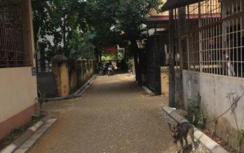 Bán đất làng Vàng, xã Cổ Bi, Gia Lâm, Hà Nội dt 41,7m2