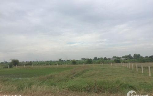Đất mặt tiền đường nhựa xã Hàm Liêm, DT 127m2 giá chỉ 450 triệu/nền