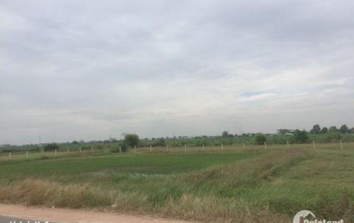 Đất nền giá rẻ 450 triệu/nền, mặt tiền đường, xã Hàm Liêm, Hàm Thuận Bắc