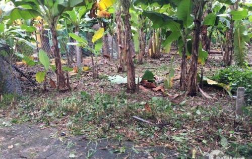Đất kiệt ô tô 5m Thủy Vân, gần KQH TĐ4 và RoyalPark, giá chỉ 915 triệu