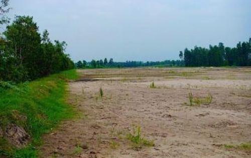Đất Nền Bình Lợi, Bình Chánh - SHR - Pháp Lý Rõ Ràng